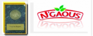 N'Gaous -Success Stories-